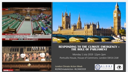 RESPONDING TO THE CLIMATE EMERGENCY – THE ROLE OF PARLIAMENT